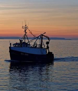 Bilde av Fiskeprodukter